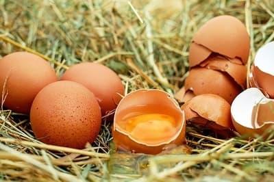 dlaczego warto jeść jajka